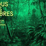 Fondation Cartier Paris / Exposition Nous les arbres  [VIDEO]